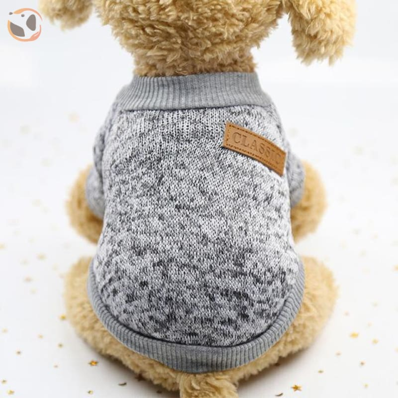 Winter Sweater for Small Dogs - 7 / L