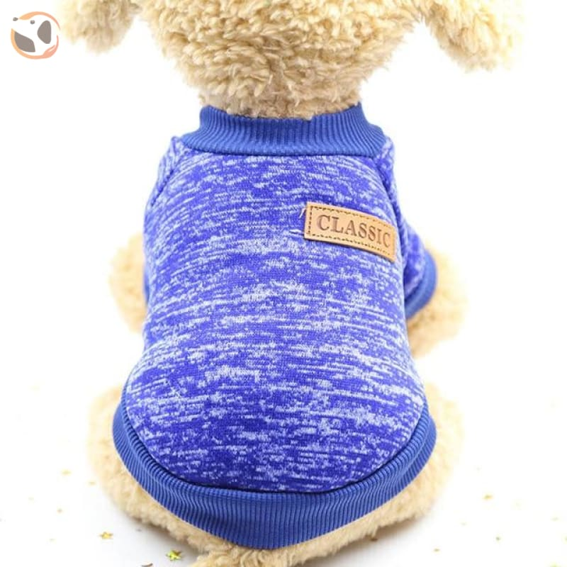 Winter Sweater for Small Dogs - Blue / L