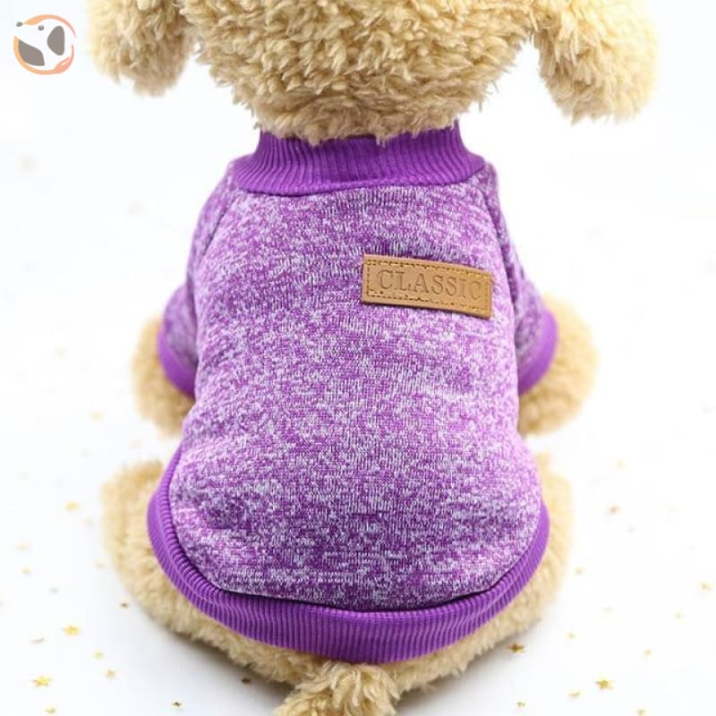 Winter Sweater for Small Dogs - Purple / L