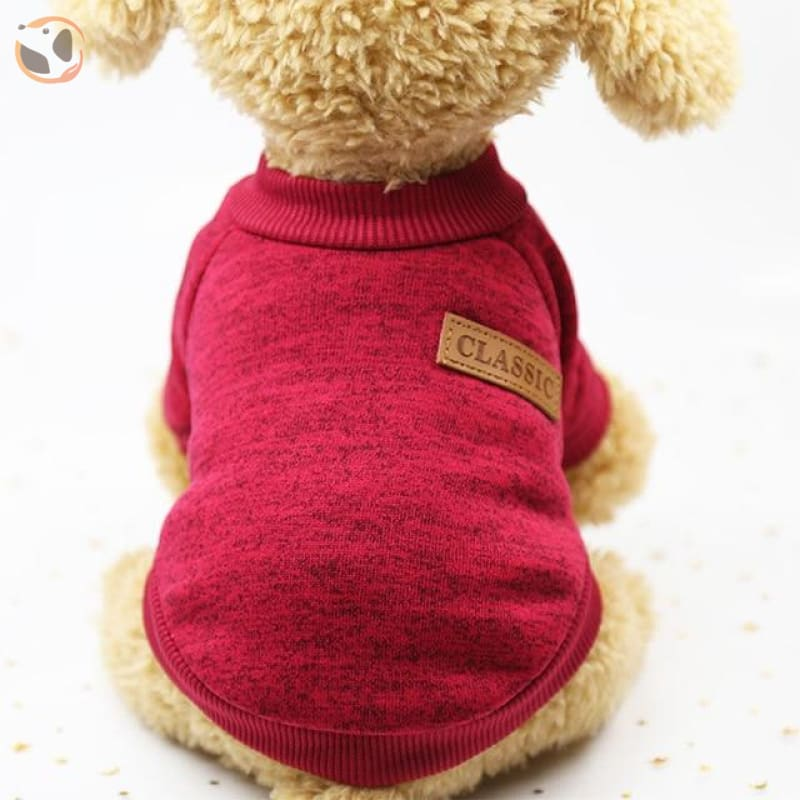 Winter Sweater for Small Dogs - Red / L