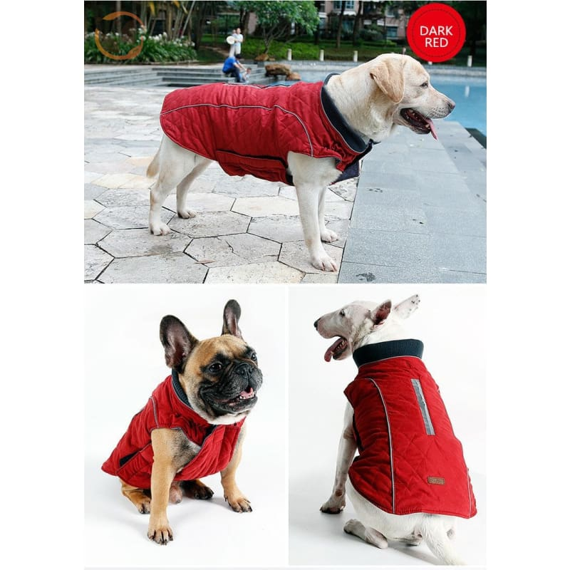 Winter Waterproof Dog Coats - Dark Red / Xs