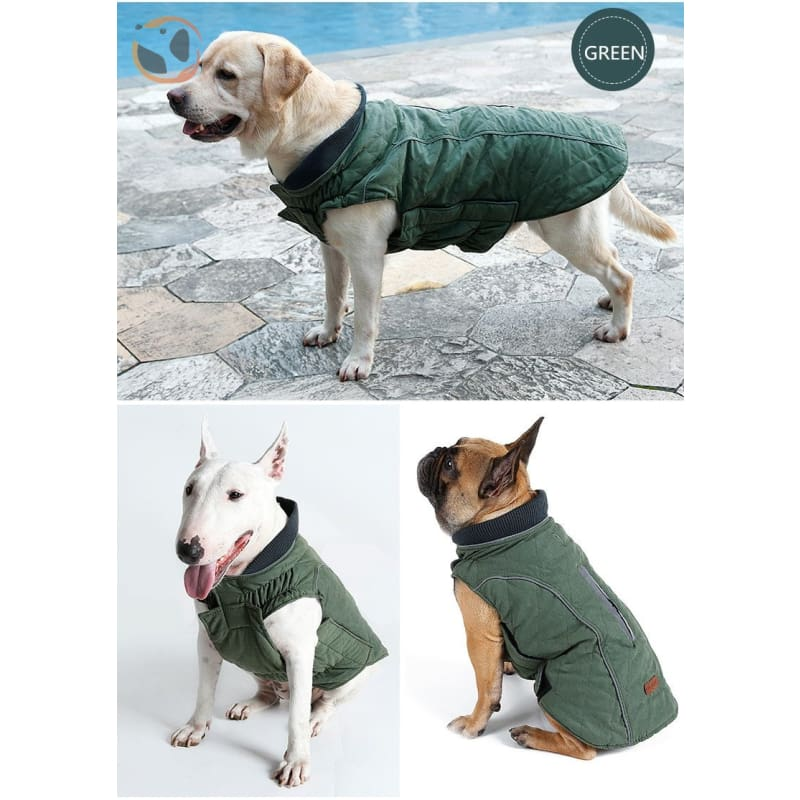Winter Waterproof Dog Coats - Green / Xs