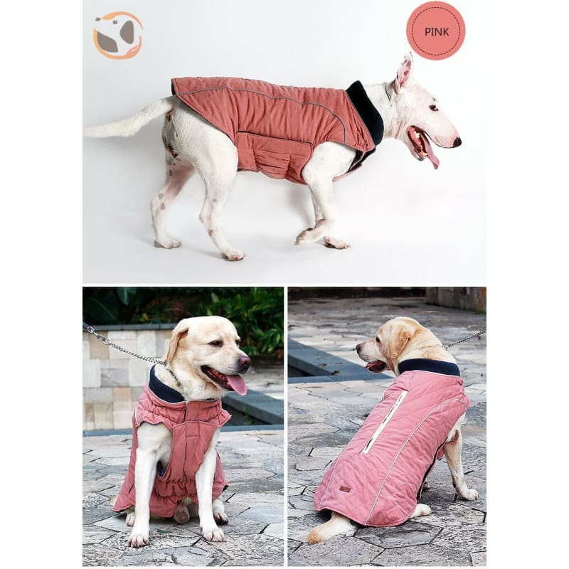 Winter Waterproof Dog Coats - Pink / Xs