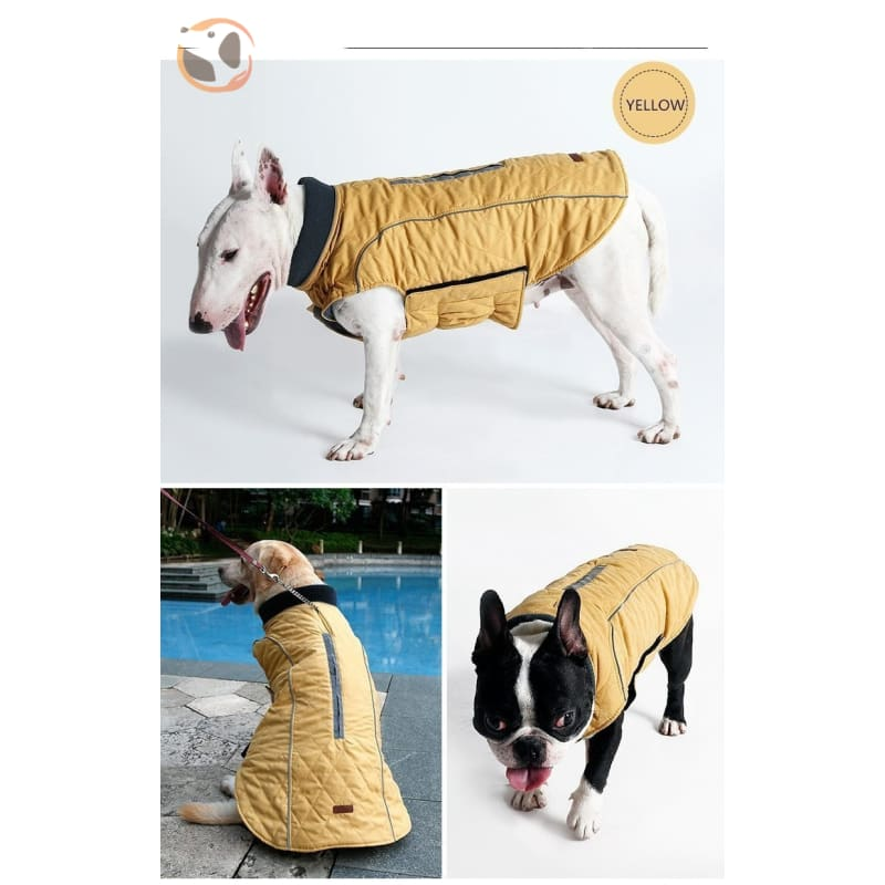 Winter Waterproof Dog Coats - Yellow / Xs