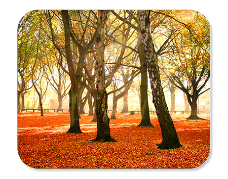 "Mouse Pad - Rounded Rectangle 7.75"" x 9.25"" - Instafreshener"