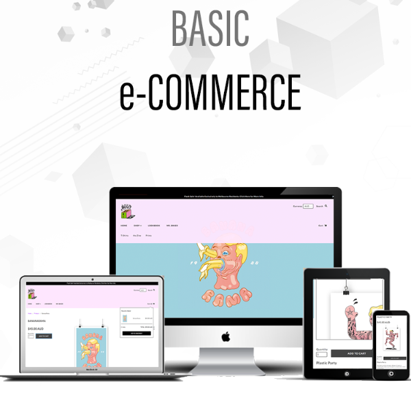 e-Commerce Basic Website Design Package