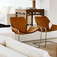 Lounge & Accent Chairs