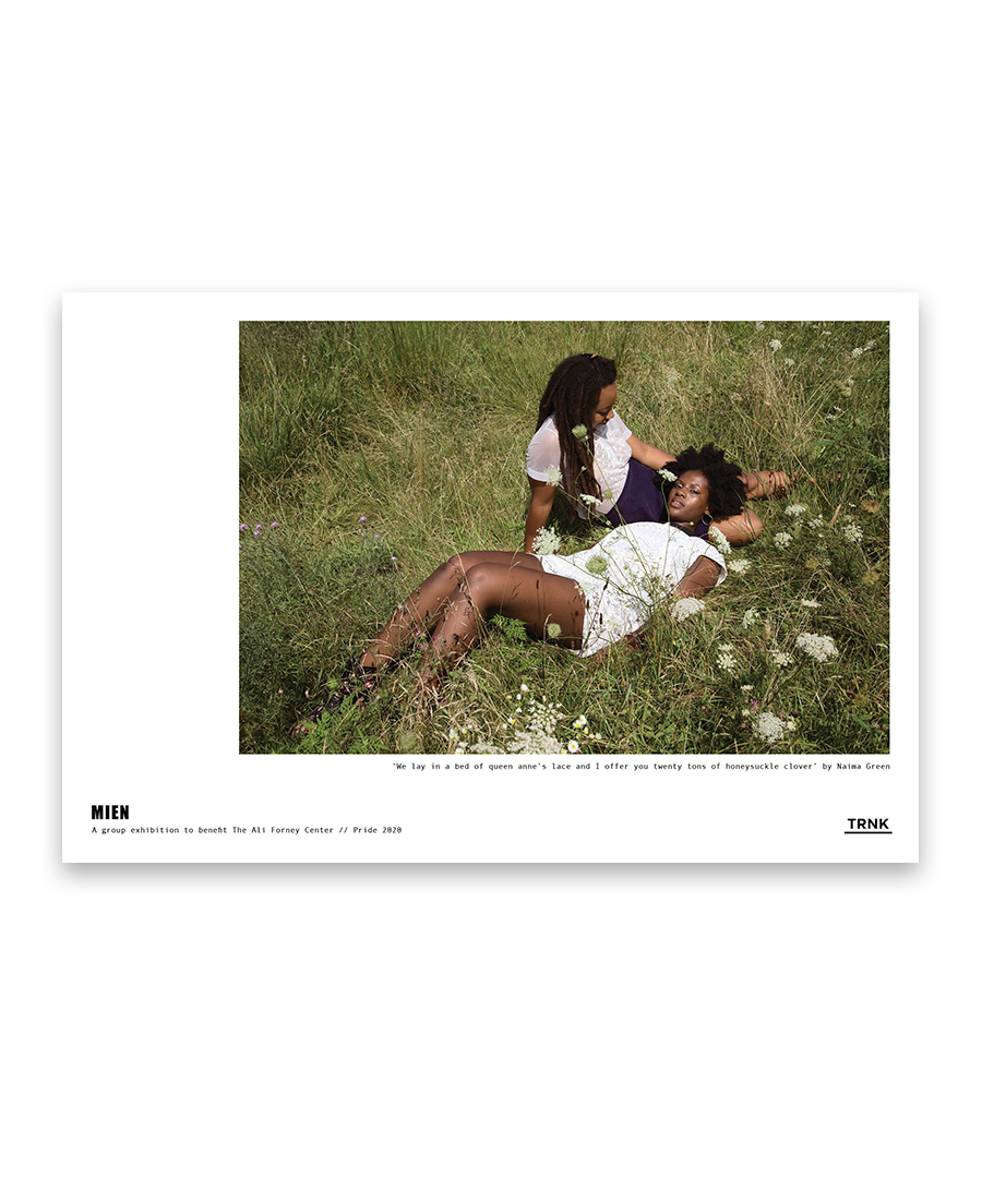 'we lay in a bed of queen anne's lace...' Poster Print by Naima Green