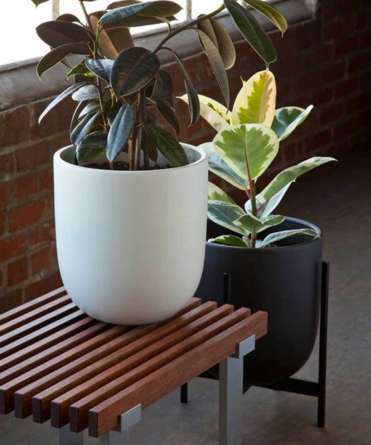 Case Study Bullet Planter by Loloi | TRNK