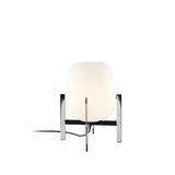 Cestita Metlica Table Lamp