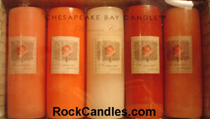 Romantic Collection Pillar Candles 2x6 - Closeout