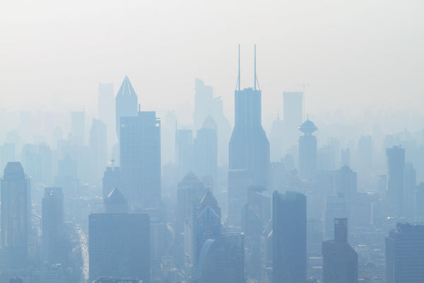 Pollution, city living, and mindful consumer choices | Almeda Labs