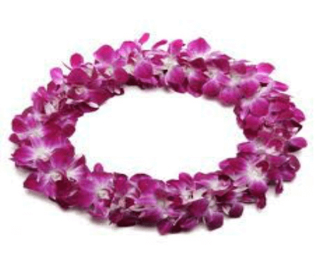 JF143 - Double Orchid Lei