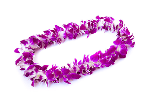 JF142 - Single Orchid Lei