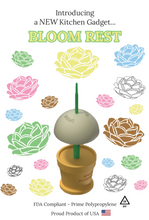 "Spoon Blossoms Starter ""How-To Kit"" Bundle #1"