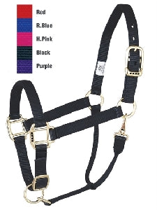 Nylon Yearling/Small Horse Halter