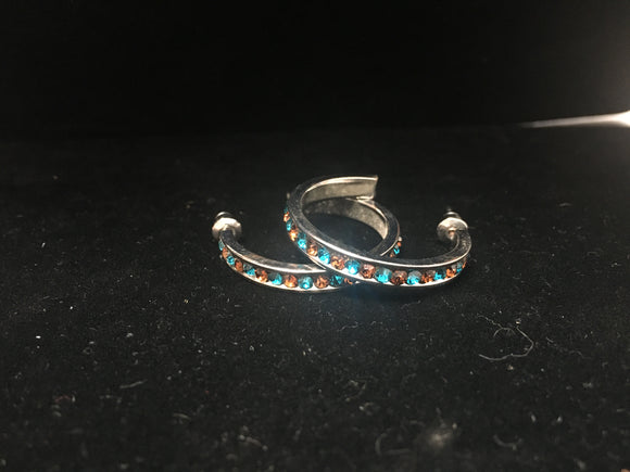Small Hoop Earrings (HBTQE)