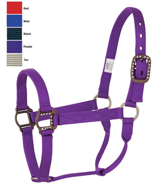 Nylon Horse Halter with Antique Brown Hardware
