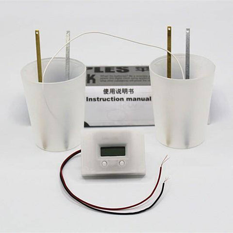 Image of Novelty Potato Clock Electrochemical Cell Experiment