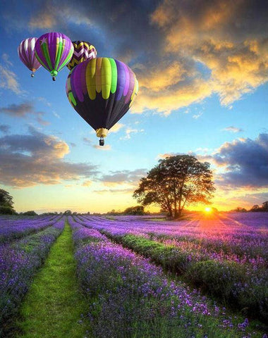 Hot Air Balloon Lavender Field DIY Painting By Number Kit