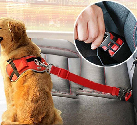 Image of Vehicle Car Dog Seat Belt