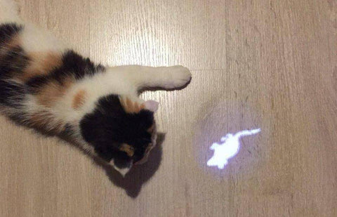 Image of Mouse LED Pointer light Pen