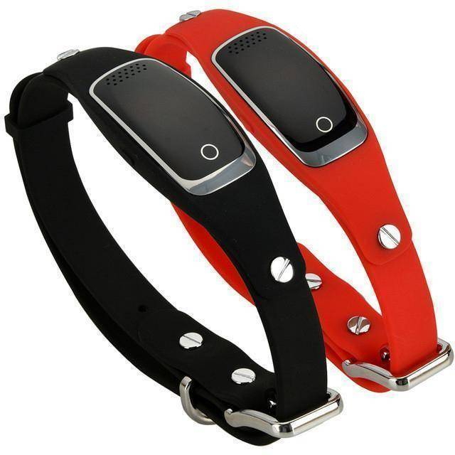 Waterproof GPS Pet Collar