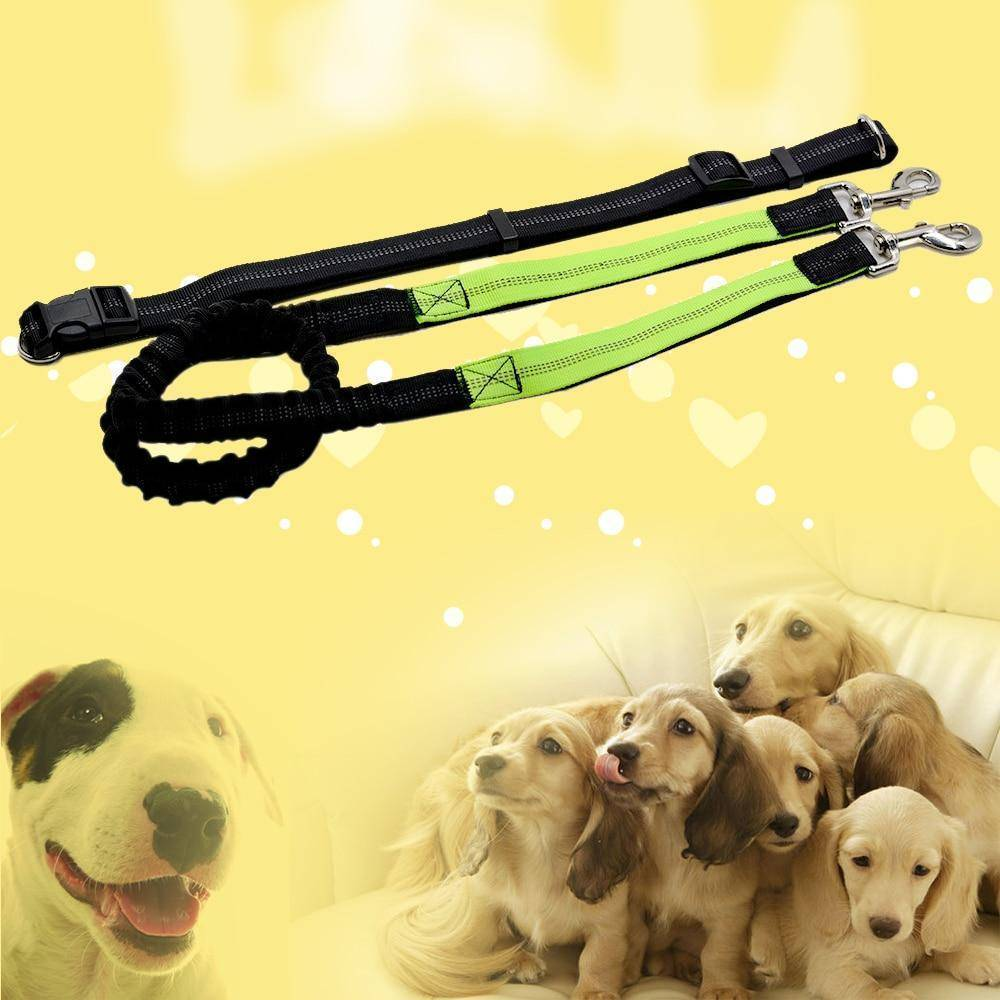 Adjustable Hands Free Bungee Dog Leash