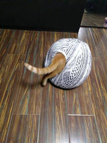 Image of Spherical Cat House with Round Opening