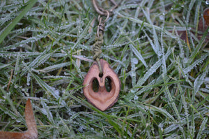 Heart made from tree seeds