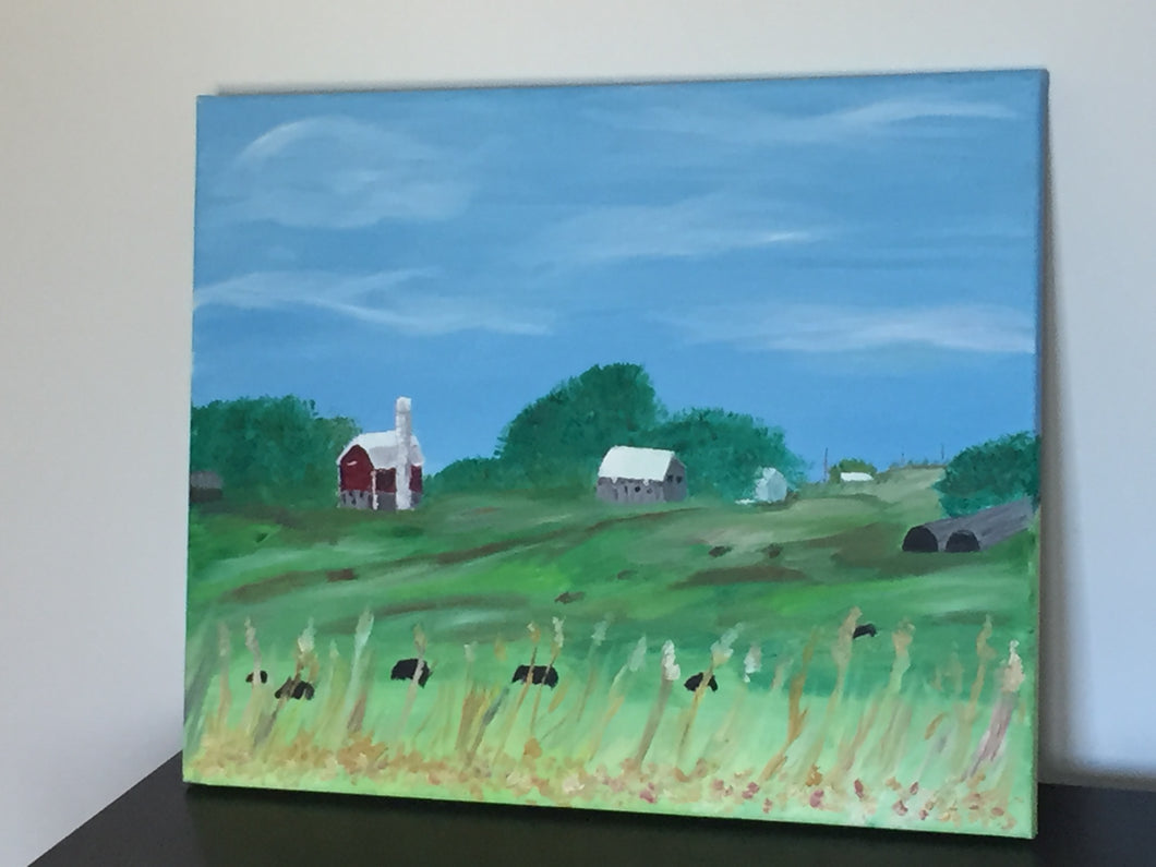Farm and Cows