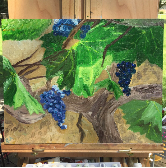 Vines and Grapes