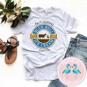 Ain't Nothing Blue Bell Ice Cream Can't Fix Graphic Tee