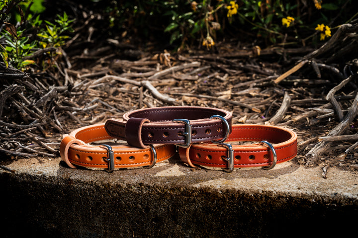 "1"" Benchmark Leather Dog Collar"