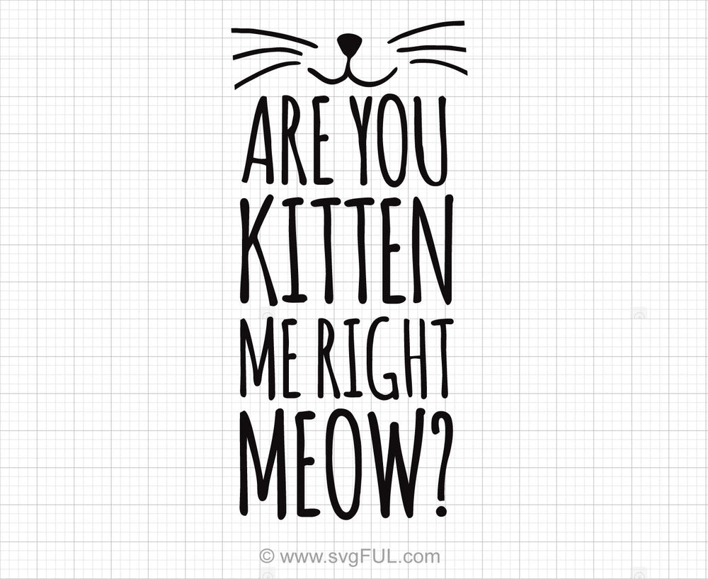 Are You Kitten Me Right Meow Svg Saying