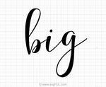 Big Sorority Reveal Svg Saying