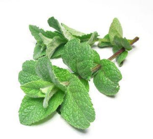 Peppermint Organic 5ml