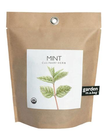 Mint-in-a-Bag