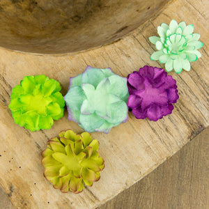 Succulent Seed Paper Flowers