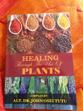 Healing Through The Use Of Plants