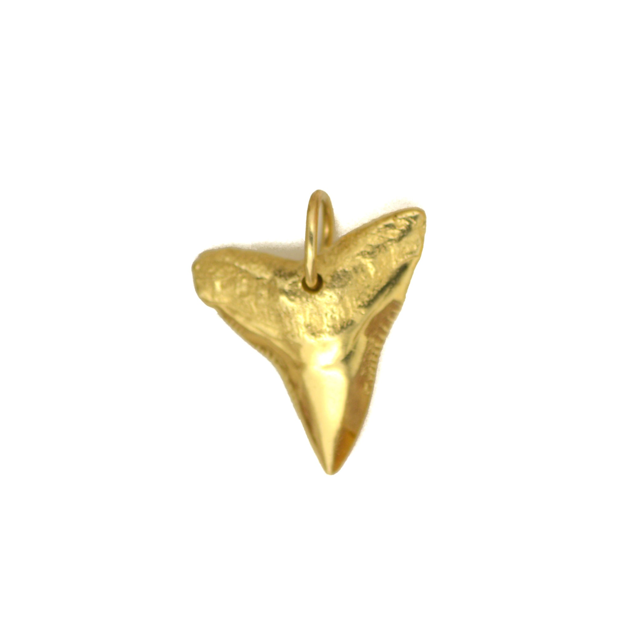 14K Gold Sharks Tooth 4.4g