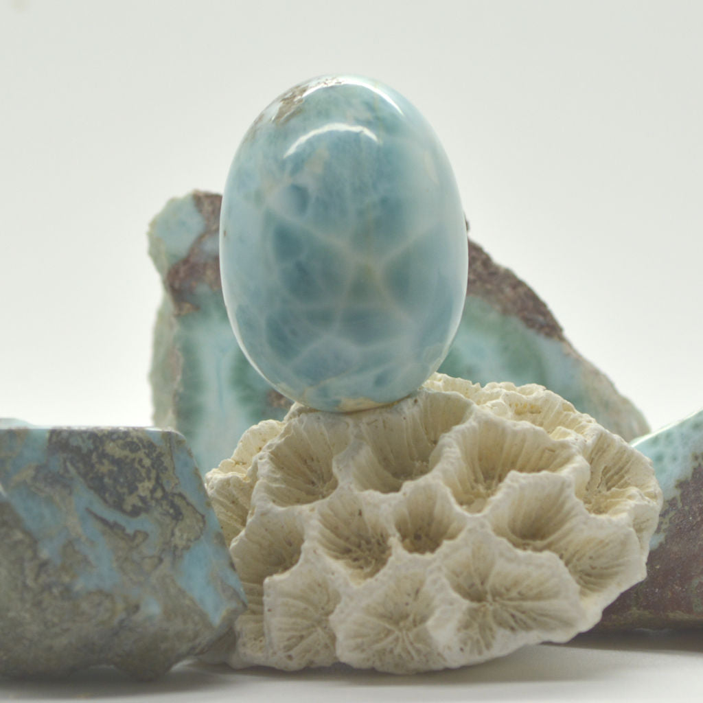 Carving of Large Larimar Egg 105g