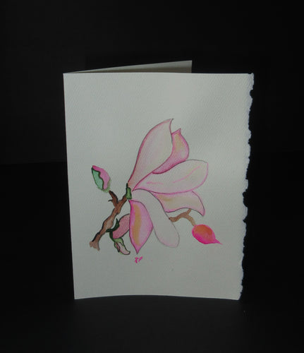 Magnolia Bloom on beige paper