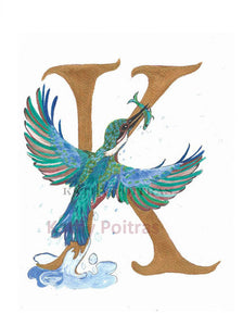illustrated letter K is for Kingfisher