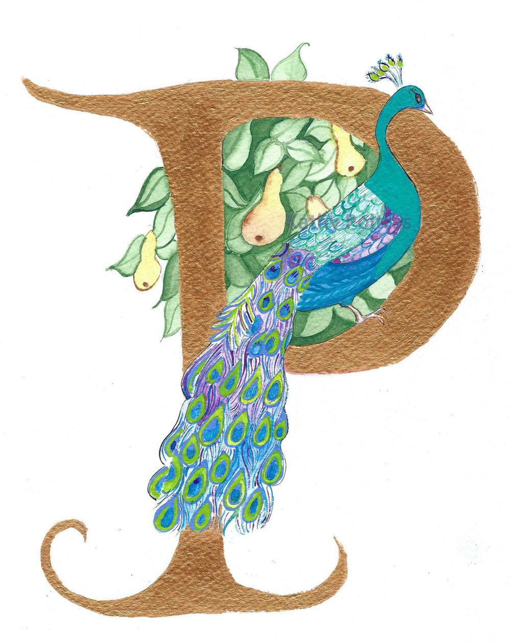 Illustrated Letter P for Peacock and Pear tree
