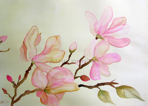 delicate pink magnolias on a parchment colored background