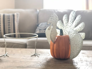 Metal Turkey Set