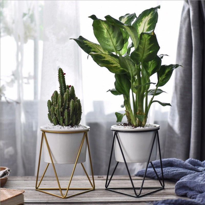 Geometric Ceramic Planter - Decor Planter On Special | Theawakenwave