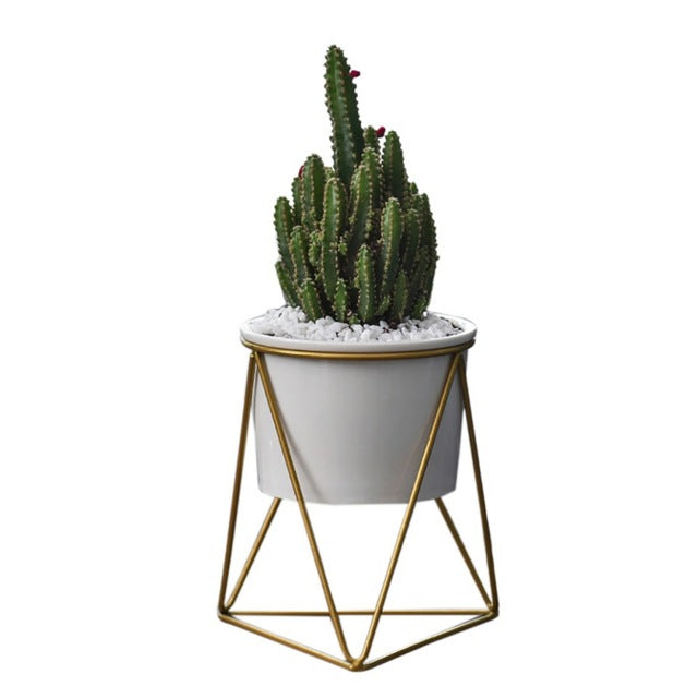 Geometric Rack with White Ceramic Planter - ARISTAEZ