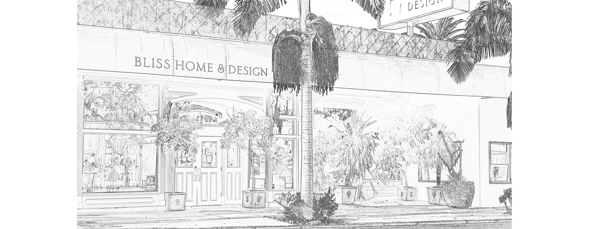 Our Story Bliss Home Design